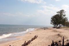 Am Ozean 2-Mosambik